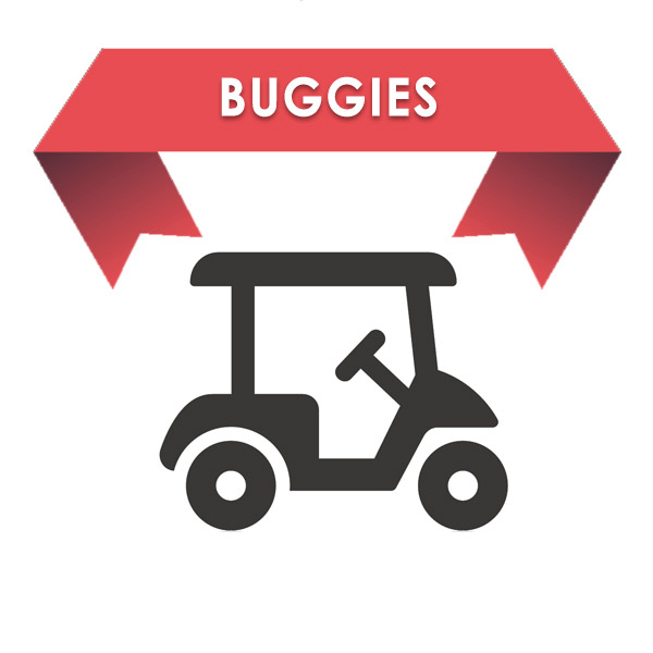 Sponsorship of Buggies